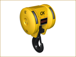 OX Worldwide electronic hook block weight cranes